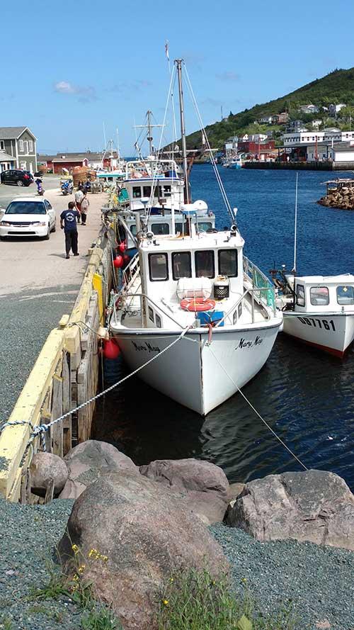 Newfoundland Boat